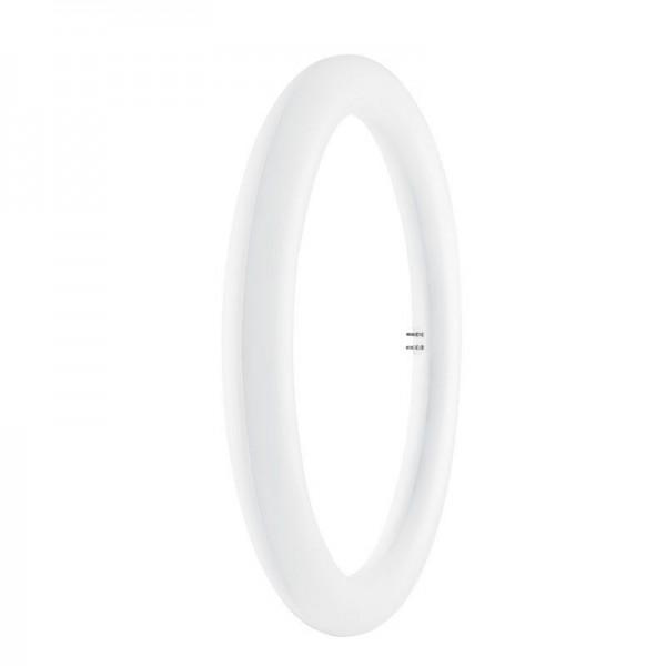 Osram/LEDVANCE LED Substitube T9 20W 6500K tageslichtweiß 2000 G10q Matt nicht dimmbar