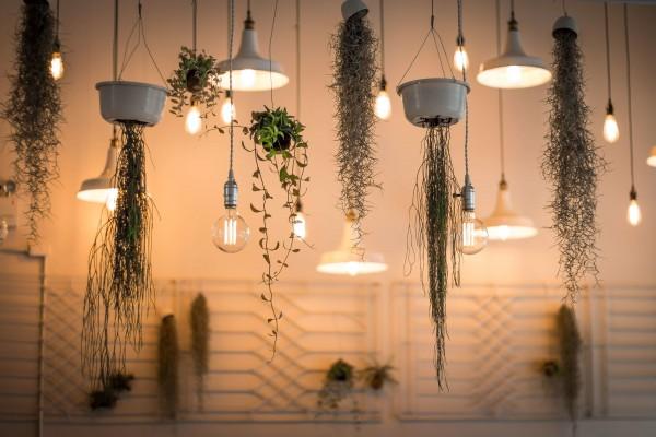 Licht-Dekoration